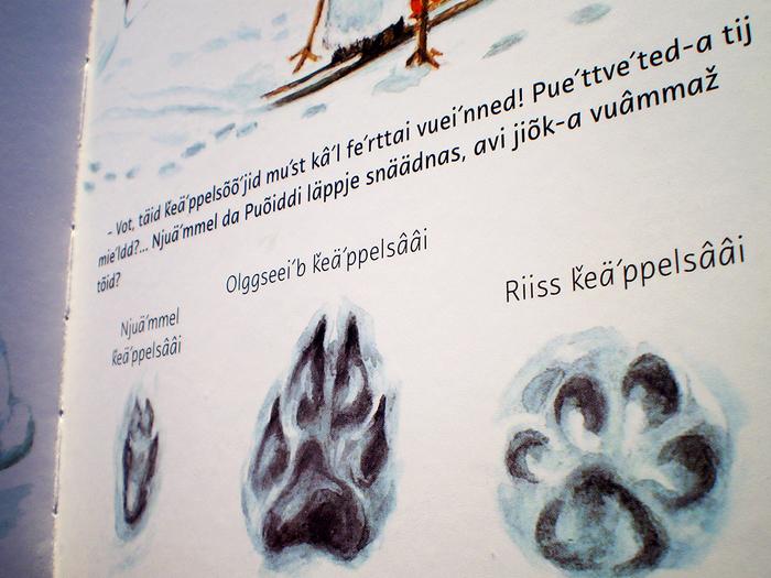 Sámi kids' books 5