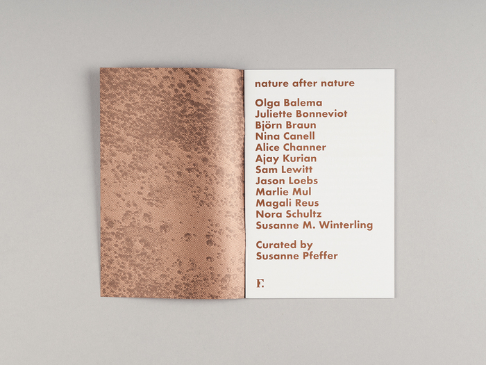 Nature after nature exhibition, Fridericianum 6