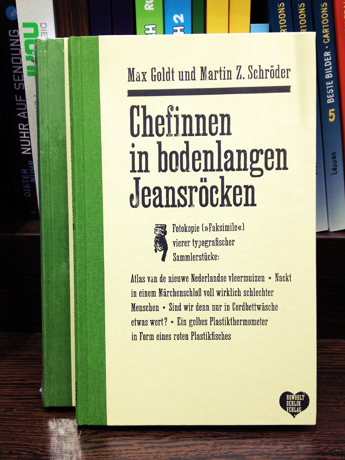 Chefinnen in bodenlangen Jeansröcken book cover