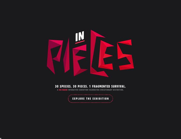 In Pieces website 5