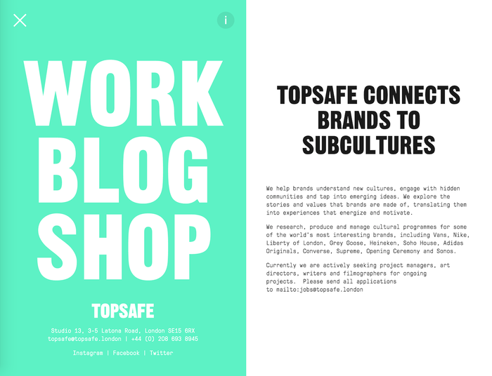 Topsafe identity and website 5