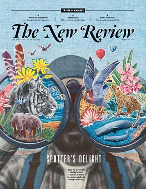 The New Review 6