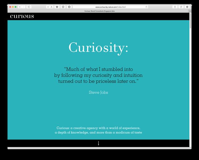 Curious Consultants 2
