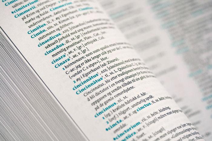Latin-Norwegian dictionary 6