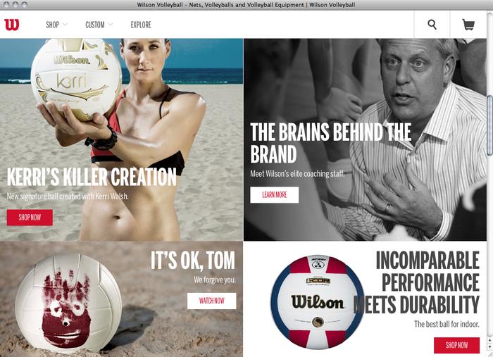 Wilson website 2