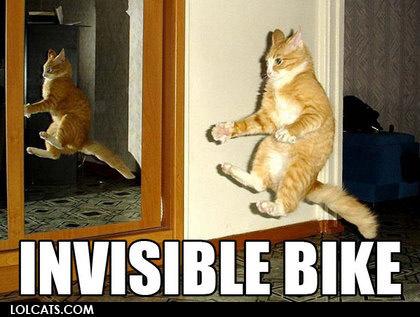 LOLcats internet meme 2