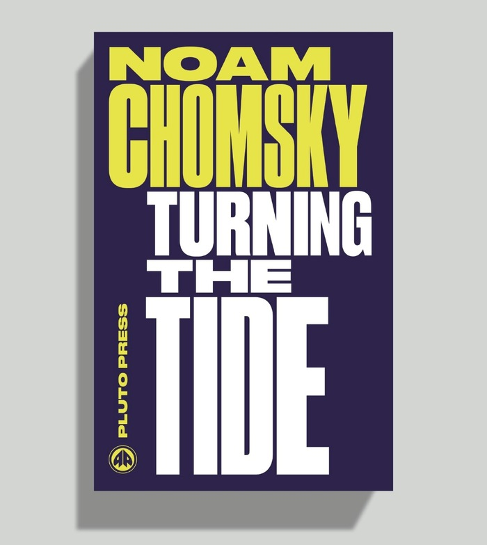 Chomsky Perspectives book series 6