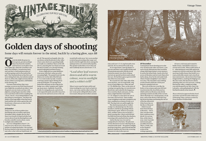 Shooting Times redesign 3