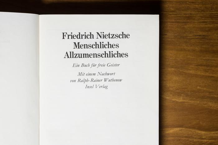 Menschliches, Allzumenschliches by Nietzsche 3