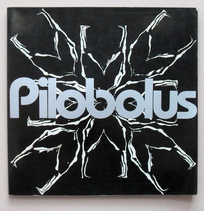 Pilobolus 1