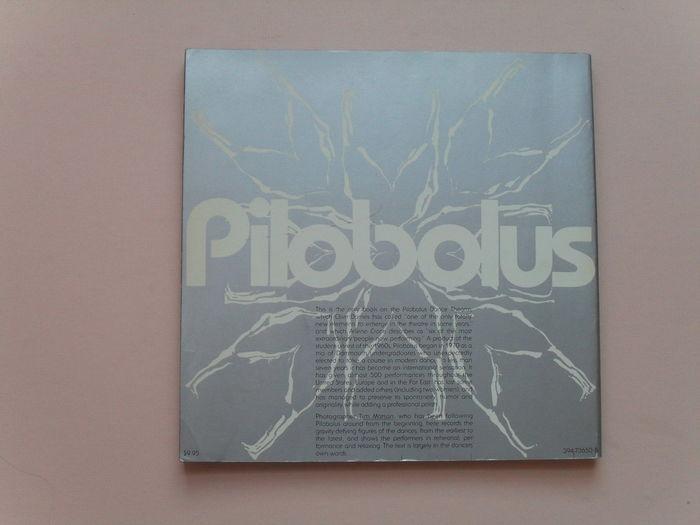 Pilobolus 4