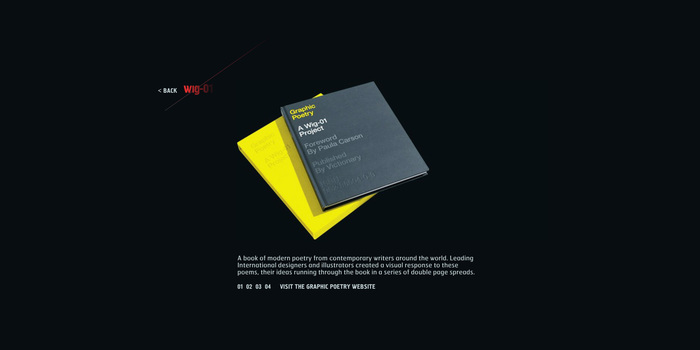 Wig-01 website 5