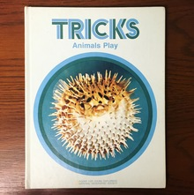 <cite>Tricks Animals Play</cite>