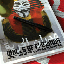 <cite>Walls of Freedom</cite> book cover
