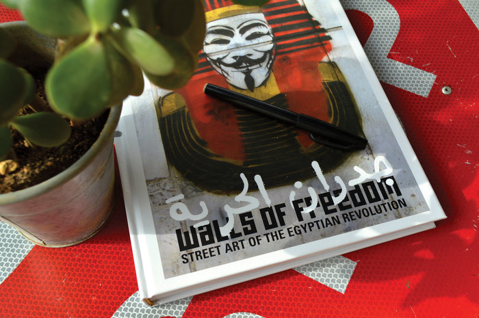 Walls of Freedom book cover 1