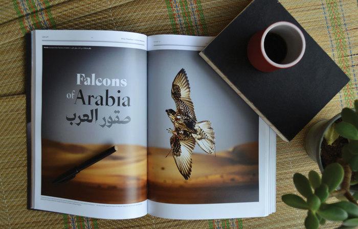 Shawati' Magazine 15