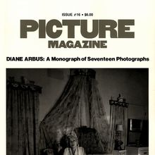 <cite>Picture Magazine</cite> (1976–81)