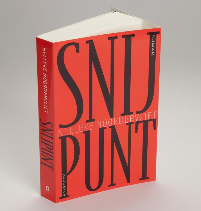 Snijpunt by Nelleke Noordervliet 1
