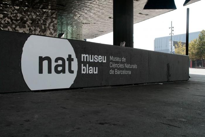 Museu Blau 2