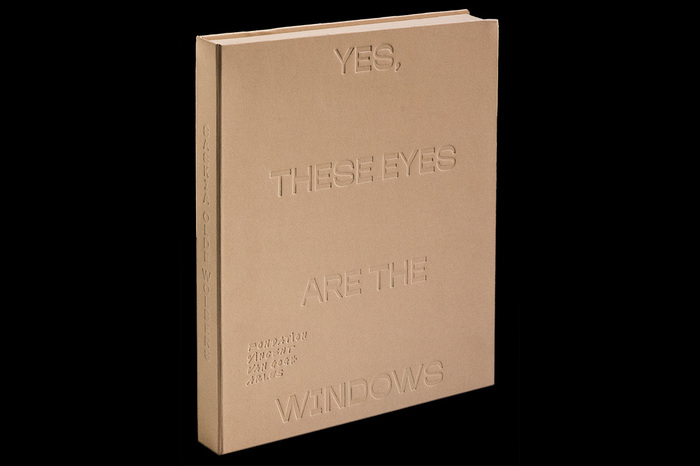 Yes, These Eyes Are the Windows by Saskia Olde Wolbers 1