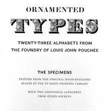 <cite>Ornamented Types</cite> Introduction and Prospectus