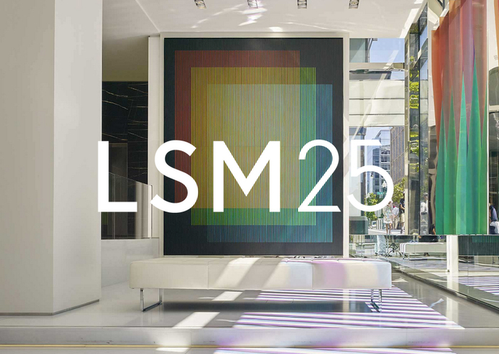 LSM Studio website 1