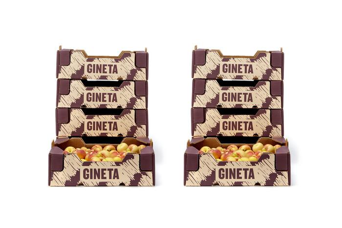 Gineta 1