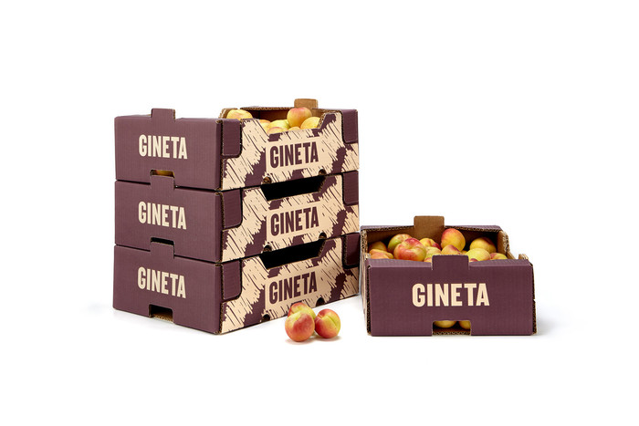 Gineta 2