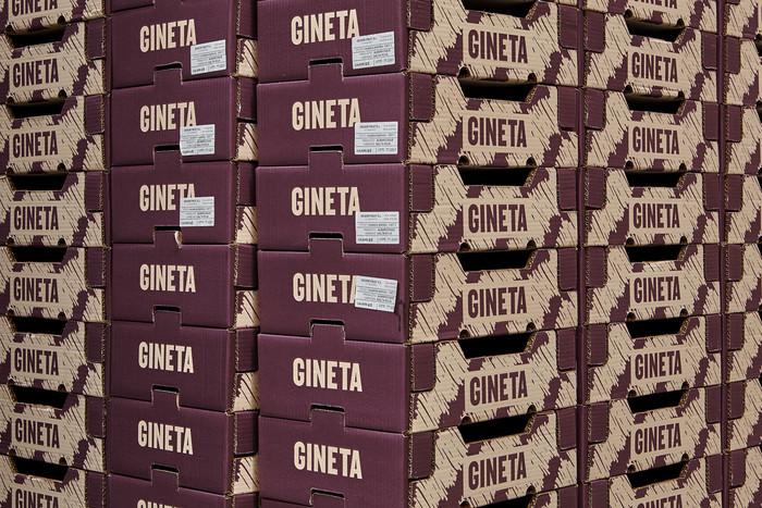 Gineta 3