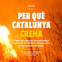 """Per Què Catalunya Crema"" feature for Ara.cat"