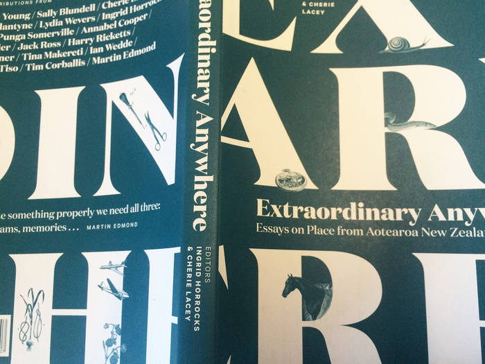 Extraordinary Anywhere: Essays on Place from Aotearoa New Zealand 6