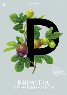 Primitia fig poster