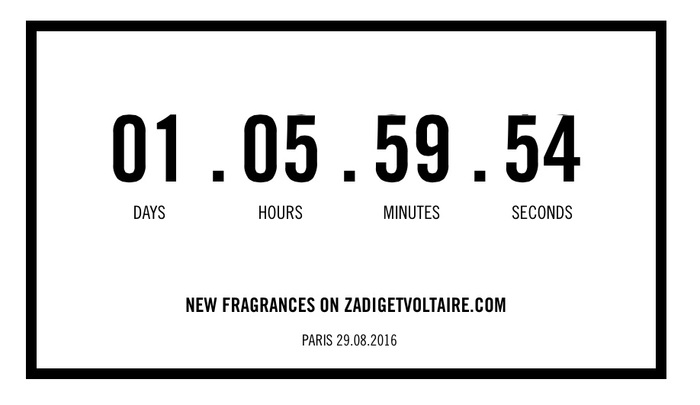 Zadig & Voltaire logo and website 5