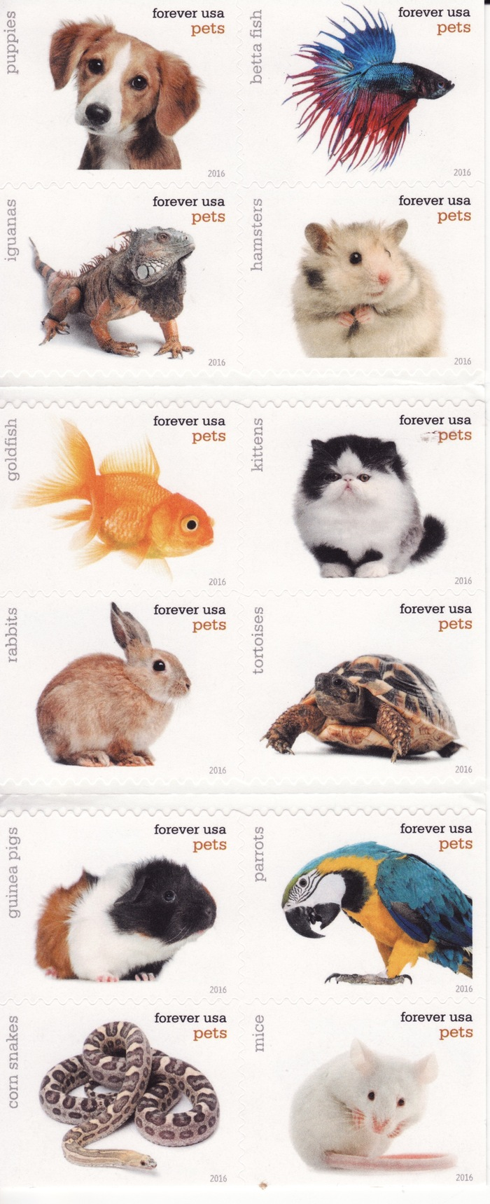 "USPS ""Pets"" postage stamps 2"