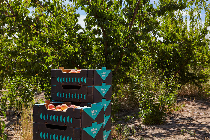 Arlette Fruits 2