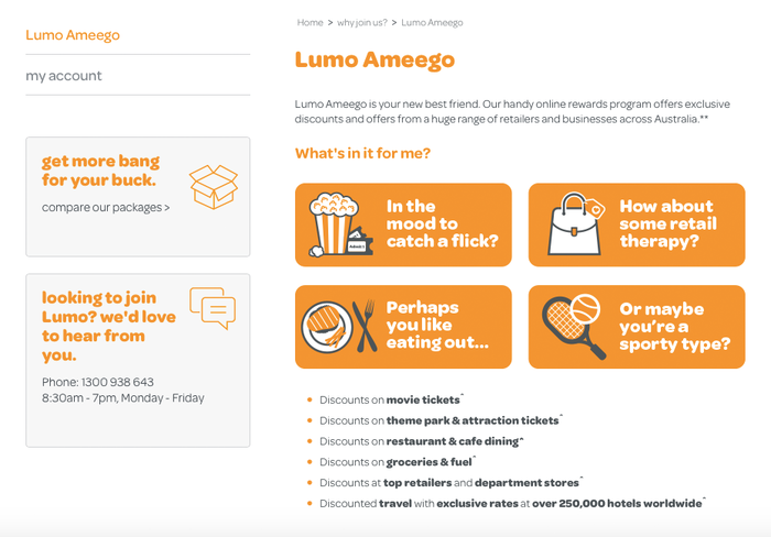 Lumo Ameego — detail from the website designed by Bullseye Digital