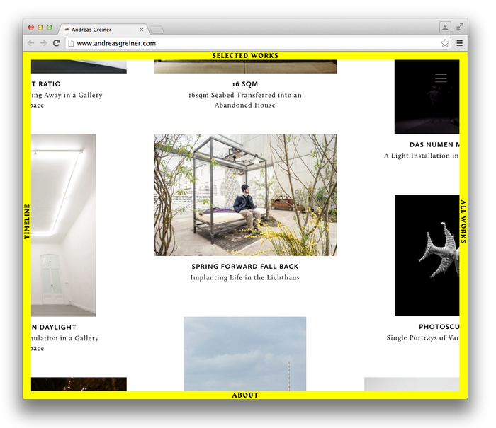 Andreas Greiner website 2