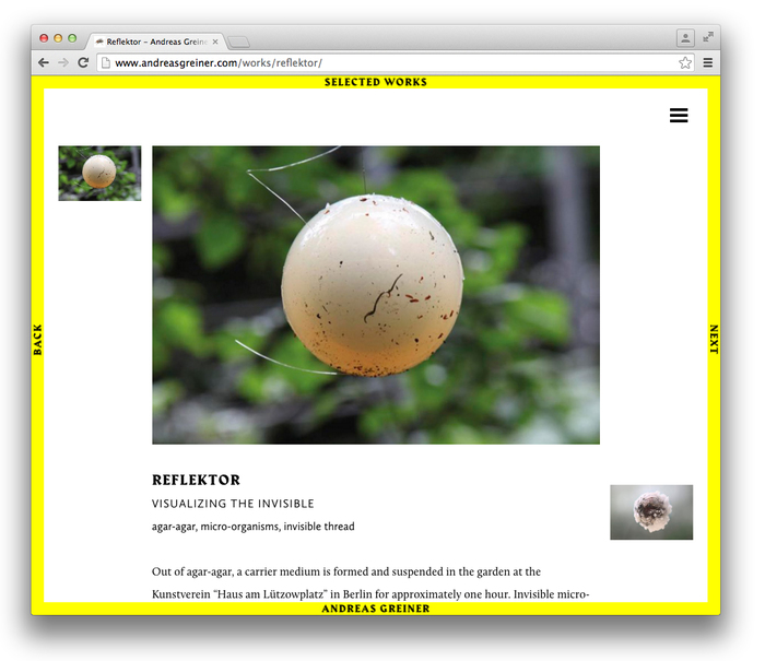 Andreas Greiner website 6
