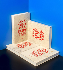 <cite>Anatomy of a Fairy Tale</cite> by Andreas Greiner