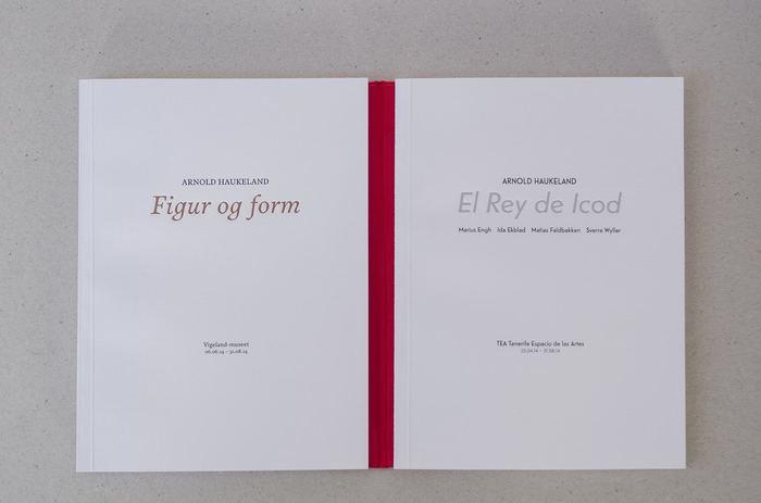 El Rey de Icod / Figur og form 3