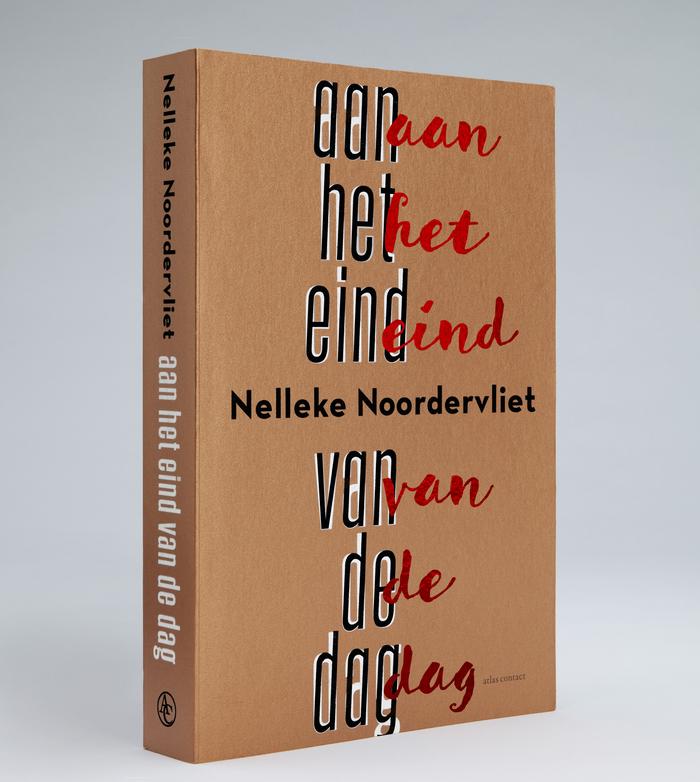 Aan het eind van de dag by Nelleke Noordervliet