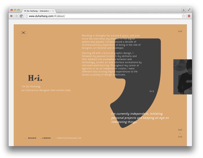 Du Haihang website 10