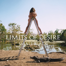 <cite>Limits of Desire</cite> by Small Black