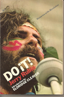 <cite>DO IT! Scenarios of the Revolution</cite> by Jerry Rubin