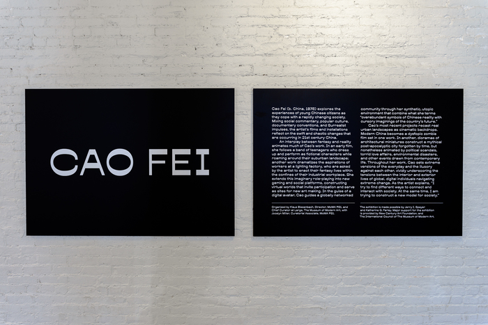 Cao Fei at MoMA PS1 2