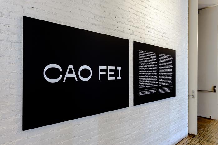 Cao Fei at MoMA PS1 3