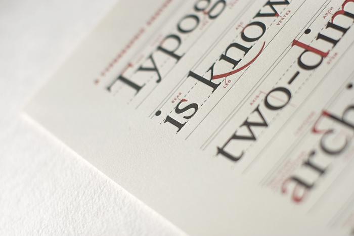 Typographic Anatomy Poster 2