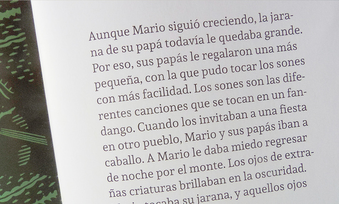 Mario's jarana / La jarana de Mario 10