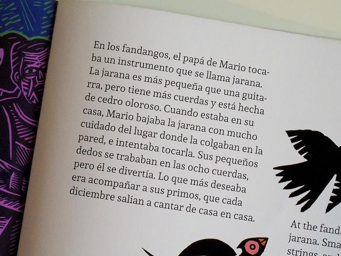 Mario's jarana / La jarana de Mario 16