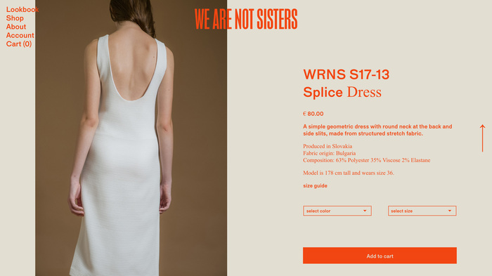 We Are Not Sisters website 2